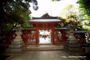 金王八幡宮 神前式 東京